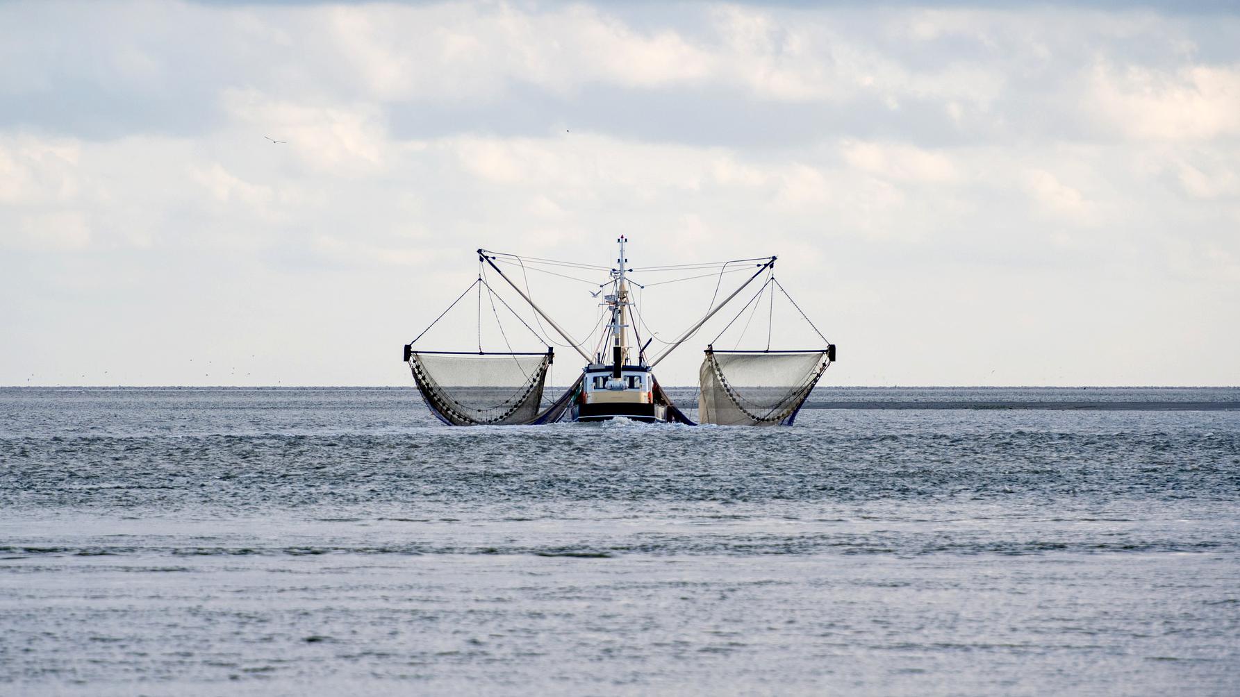fishing-boat-5903147_1920_16x9